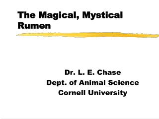 The Magical, Mystical Rumen