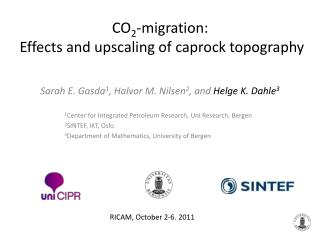 CO 2 -migration:  Effects and upscaling of caprock topography