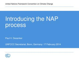The background of the NAP process
