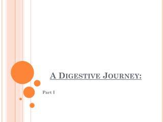 A Digestive Journey: