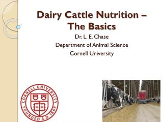 Dairy Cattle Nutrition – The Basics