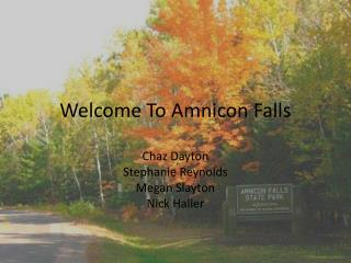 Welcome To  Amnicon  Falls