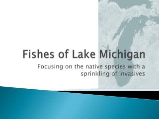 Fishes of Lake Michigan