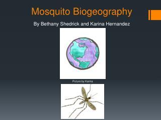 Mosquito Biogeography