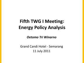Fifth  TWG I Meeting :  Energy Policy Analysis