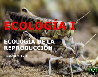 ECOLOGÍA I ECOLOGÍA DE LA REPRODUCCIÓN Trimestre 12 -O