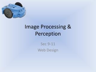 Image Processing & Perception
