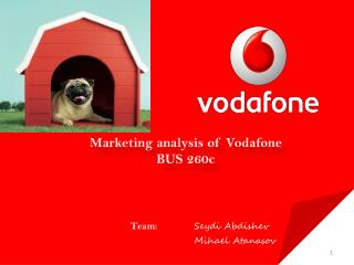 Marketing analysis of Vodafone BUS 260c