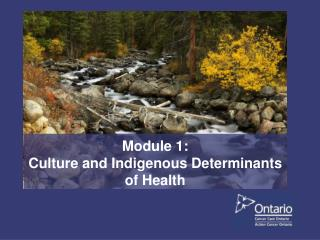 Module 1:  Culture and Indigenous Determinants of Health
