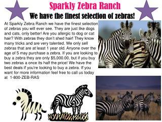Sparkly Zebra Ranch