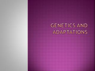 Genetics and Adaptations