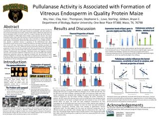 Pullulanase Activity is Associated with Formation of Vitreous Endosperm in Quality Protein Maize