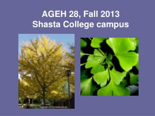 AGEH 28, Fall 2013 Shasta College campus