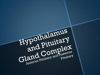 Hypothalamus and Pituitary Gland Complex