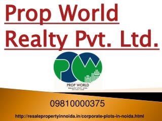 Corporate Plot for Sale in Noida, Corporate Plots in Noida