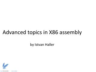 Advanced topics in X86  assembly by  Istvan  Haller