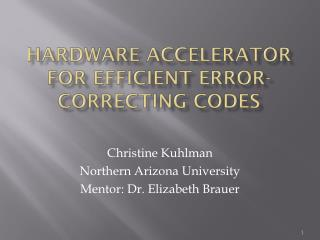Hardware accelerator for Efficient error-correcting codes