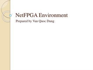 NetFPGA  Environment