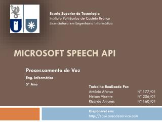 Microsoft Speech  API