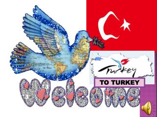 TO TURKEY