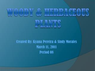 Woody & Herbaceous Plants