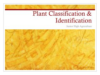 Plant Classification & Identification