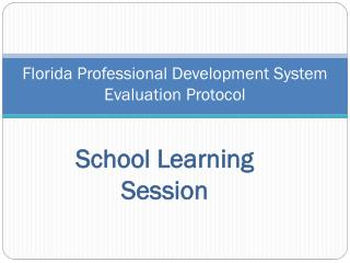 Florida Professional Development System Evaluation Protocol