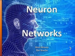 Neuron  Networks Omri  Winner Dor Bracha