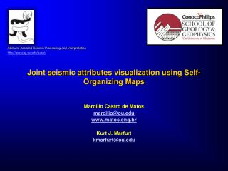 Joint seismic attributes visualization using Self-Organizing Maps