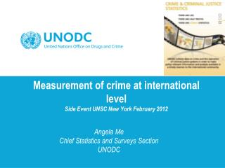 Measurement of crime at international level  Side Event UNSC New York February 2012