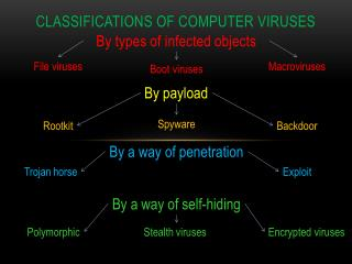 Classification s  of computer viruses
