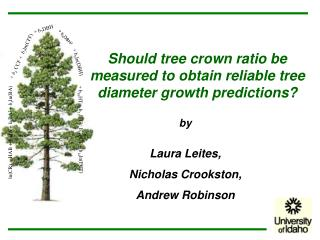 Should tree crown ratio be measured to obtain reliable tree diameter growth predictions