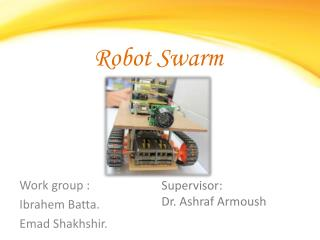 Robot Swarm