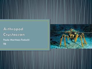 Arthropod Crustacean