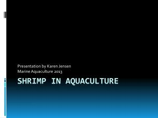 Shrimp in Aquaculture
