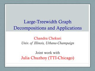 Large- Treewidth  Graph Decompositions and Applications