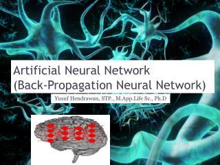 Artificial Neural Network (Back-Propagation Neural Network)
