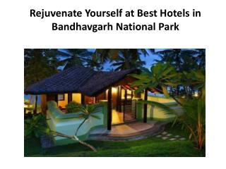 Rejuvenate Yourself at Best Hotels in Bandhavgarh National P
