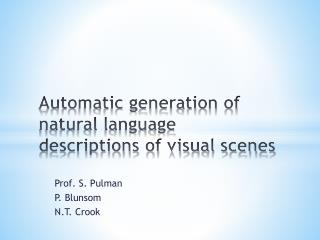 Automatic generation of natural language descriptions of visual scenes