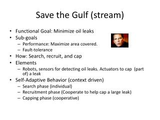 Save the Gulf (stream)