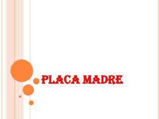PLACA MADRE