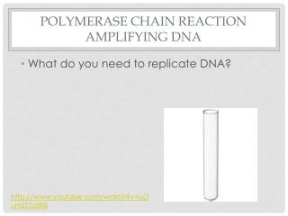 Polymerase chain reaction AMPLIFYING DNA