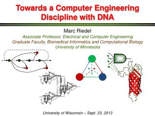 Towards a Computer Engineering Discipline with DNA