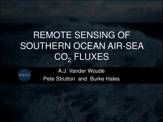 REMOTE SENSING  OF SOUTHERN OCEAN AIR-SEA CO 2 FLUXES