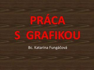 PRÁCA   S  GRAFIKOU
