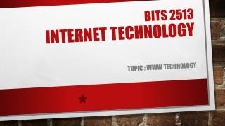 Bits 2513 internet technology