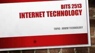 Bits 2513 internet technology