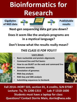 Bioinformatics for Research