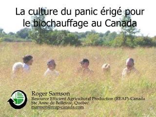 La culture du panic  rig  pour le biochauffage au Canada