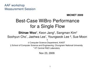 Best-Case WiBro Performance  for a Single Flow